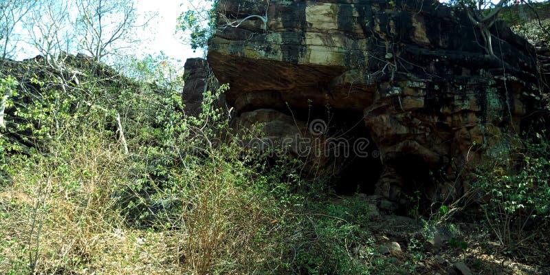 Dziejowa kamienna jama w lesie fotografia royalty free