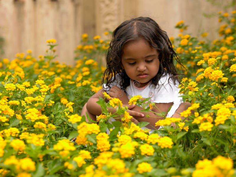 dziewczyn azjatykcie kwiatonośne rośliny zdjęcia stock