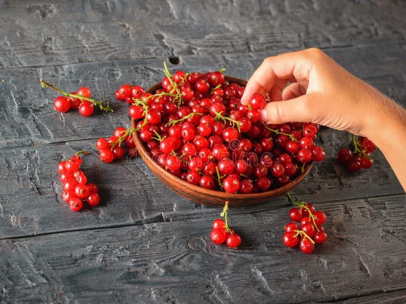 Dziewczyna bierze niektóre jagody od glinianego pucharu z czerwonymi rodzynkami obraz stock