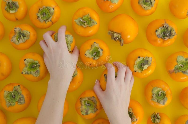 Dziewczyna bierze ręki persimmon Świeżych Organicznie dojrzałych persimmons mieszkanie kłaść na pomarańczowym stołowym odgórnego  zdjęcie stock
