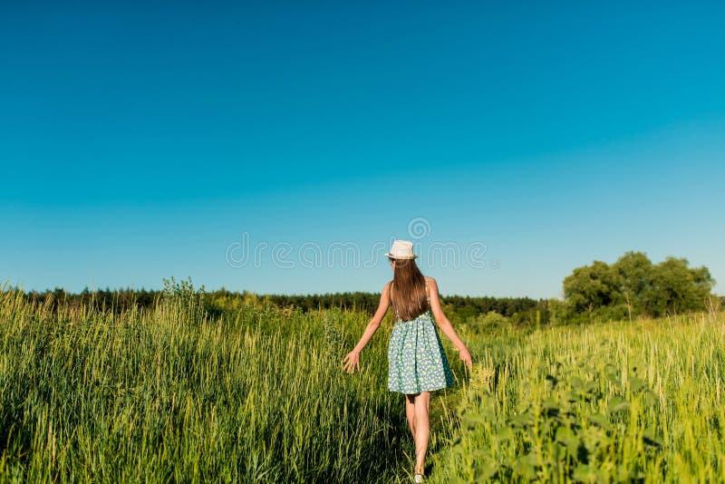 Dziewczyna chodzi macanie i pole w błękitnej sukni z wysoką trawą jej ręka spikelets zdjęcia royalty free