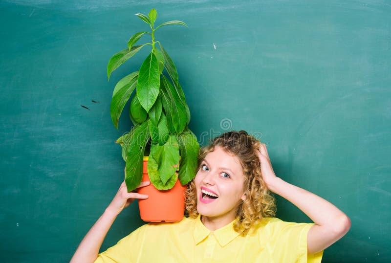 Dziewczyna chwyta roślina w garnku Kwiecisty sklep Botanika jest o rośliien ziele i kwiatach Domowy ogr?d Houseplants korzyści i zdjęcia stock