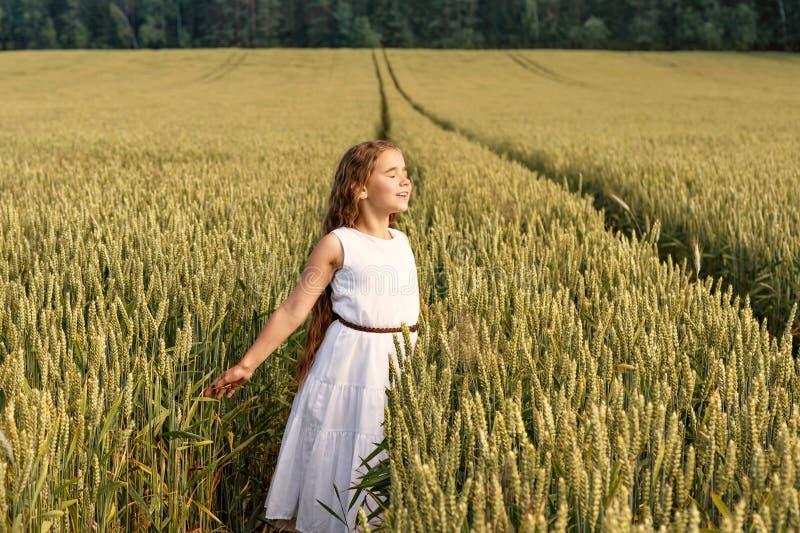 Dziewczyna cieszy się słońce z rękami szeroko rozpościerać z jej oczami zamykającymi przy pszenicznym polem fotografia royalty free