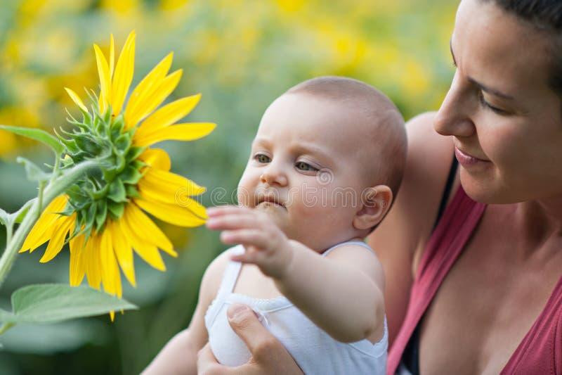Dziewczyna dotyka płatki słonecznik obraz stock