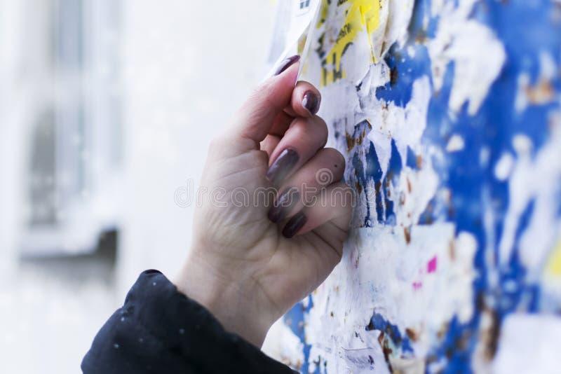 Dziewczyna drzeje daleko reklamę na desce Zima zimno 3d piękna ilustracyjna praca trzy bardzo zdjęcie stock