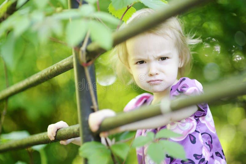 dziewczyna gniewny berbeć fotografia royalty free