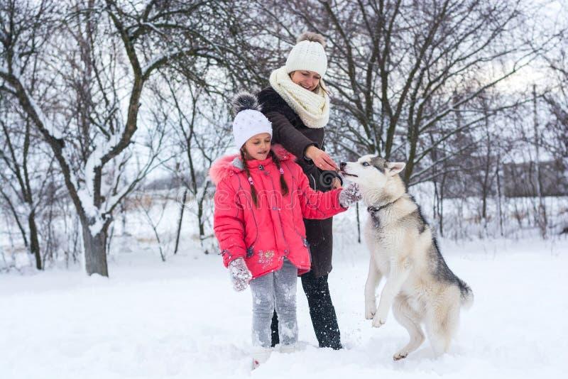 Dziewczyna i jej mama karmimy łuskowatego psa w zimie obraz stock