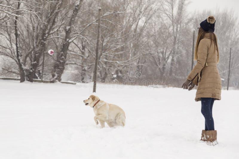 Dziewczyna i pies bawić się w śniegu obraz royalty free