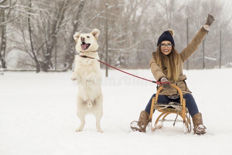 Dziewczyna i pies w śniegu obraz royalty free