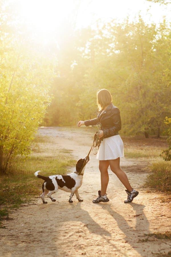 Dziewczyna i pies w jesień parku zdjęcie royalty free