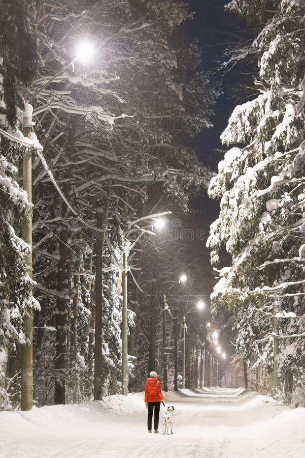 Dziewczyna i pies w zima lesie zakrywającym z śniegiem obraz stock