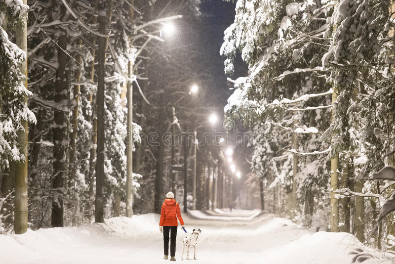 Dziewczyna i pies w zima lesie zakrywającym z śniegiem zdjęcie stock