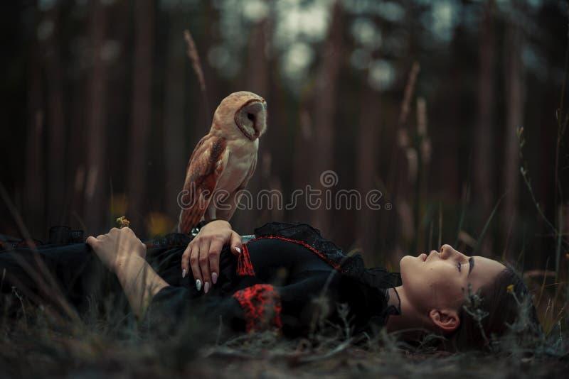 Dziewczyna kłama z sową na trawie w lesie obraz stock