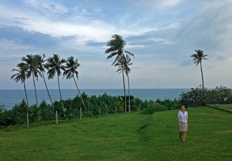 Dziewczyna, kokosowe palmy na brzeg ocean indyjski obraz royalty free
