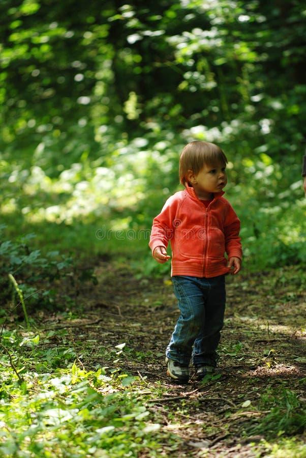 dziewczyna leśna obraz royalty free