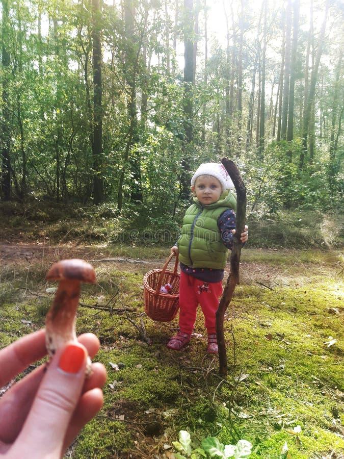 Dziewczyna ma zabawę w jesień lesie z jej rodziną fotografia stock