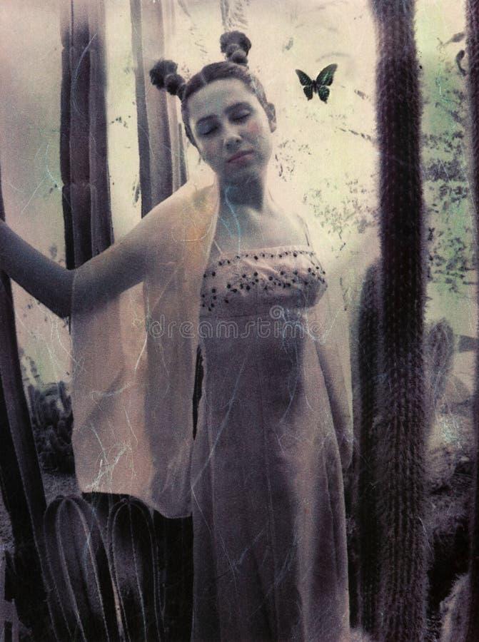 dziewczyna motylia zdjęcia stock