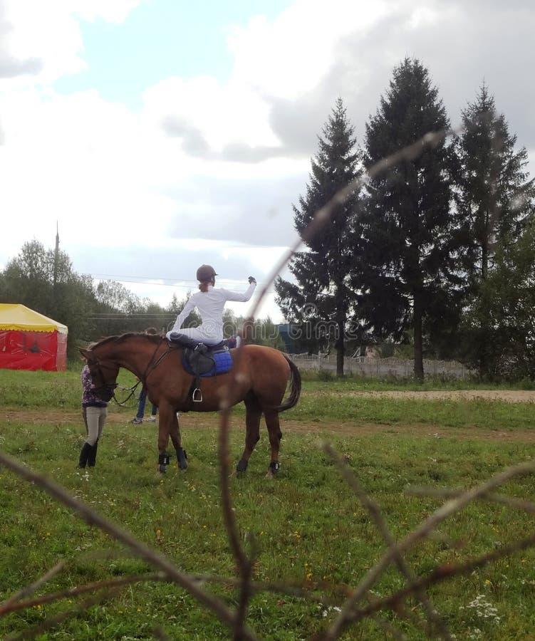 Dziewczyna na konia selfie - equestrienne zdjęcie royalty free