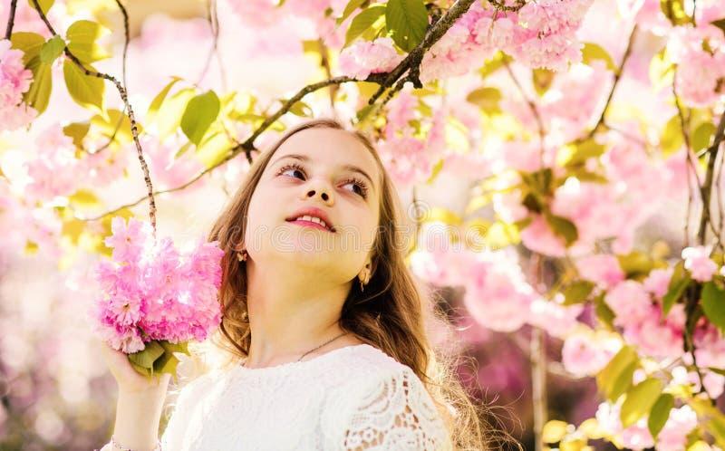 Dziewczyna na marzycielskiej twarzy pozyci pod Sakura rozgałęzia się z kwiatami, defocused Urocza młoda dziewczyna ma zabawę w ok fotografia royalty free