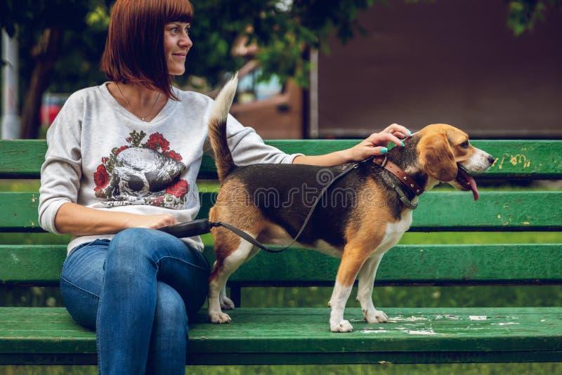 Dziewczyna na zielonej ławce z jej ślicznym żeńskim beagle psem w parku m?odzi doro?li szcz??liwy czas obrazy stock