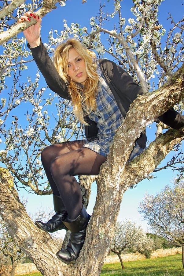 dziewczyna nad nastolatka drzewem obraz royalty free