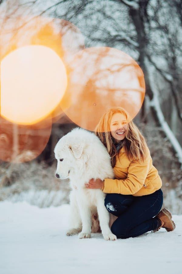 Dziewczyna obejmuje ślicznego dużego bielu psa w zima parku Dziewczyna siedzi z Maremma Las na tle sparkler obrazy stock
