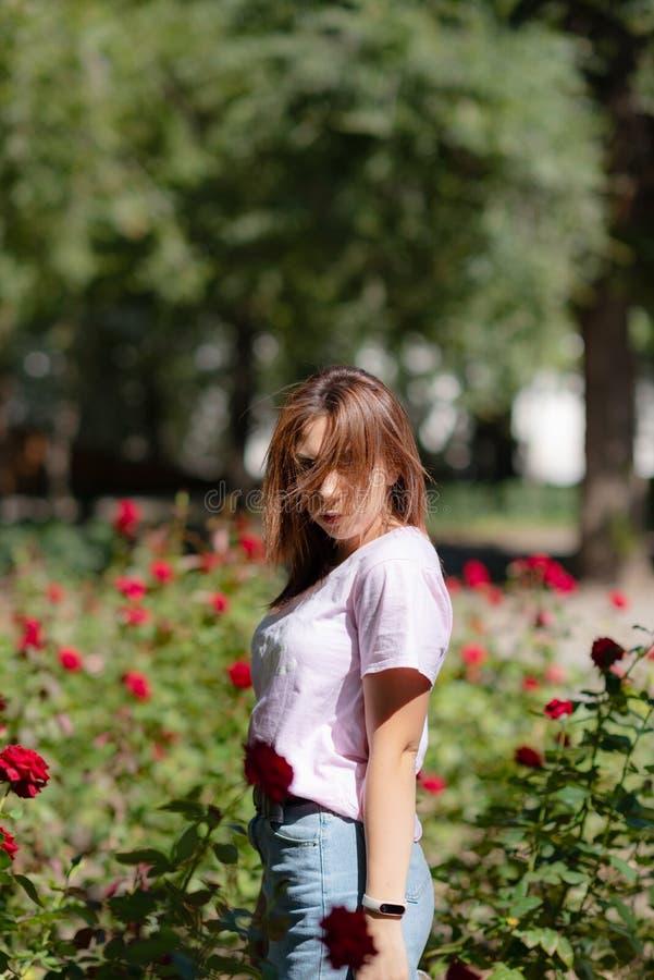 Dziewczyna obwąchuje czerwonego kwiatu nastolatek dziewczyna wącha róże fotografia royalty free