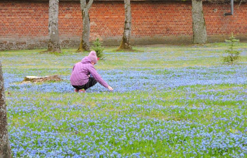 dziewczyna ogrodowa obrazy stock