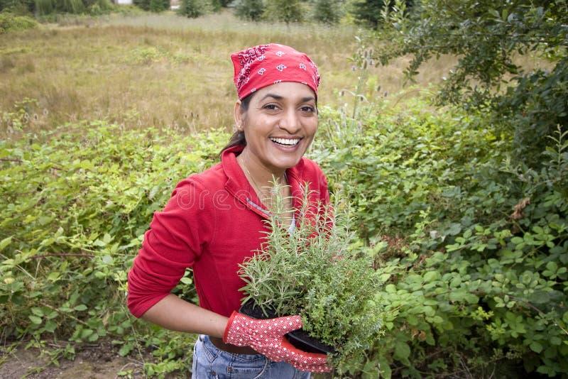 dziewczyna ogrodowa spoza pracy obrazy royalty free