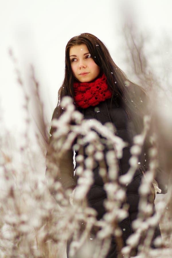 Download Dziewczyna Outdoors W śnieżnym Zima Dniu Zdjęcie Stock - Obraz złożonej z dosyć, femaleness: 28953060