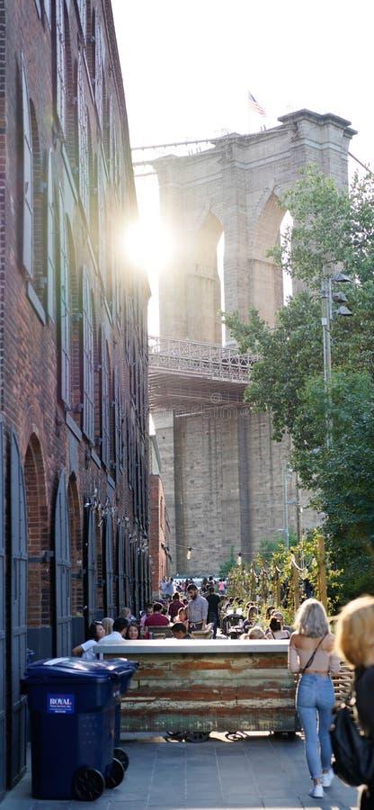 Dziewczyna patrzeje most brooklyńskiego z zmierzchu światłem obrazy royalty free