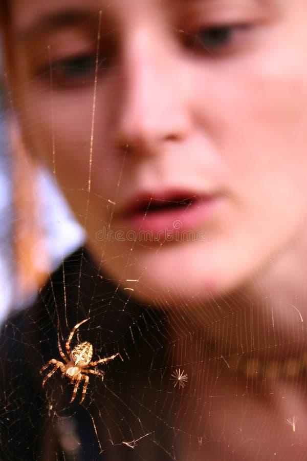 dziewczyna patrzy na sieć pająka obrazy stock
