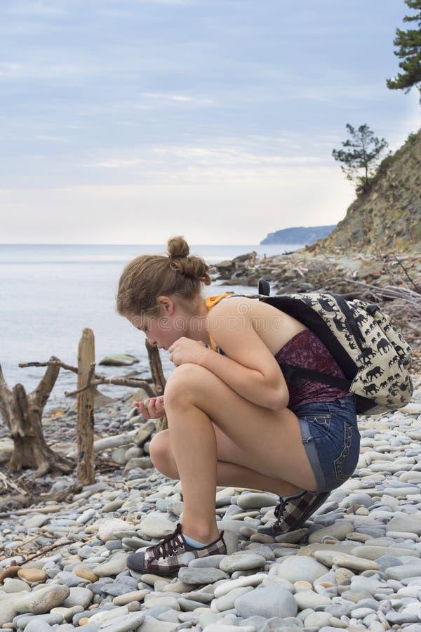 Dziewczyna podnosi up seashells na plaży zdjęcia royalty free