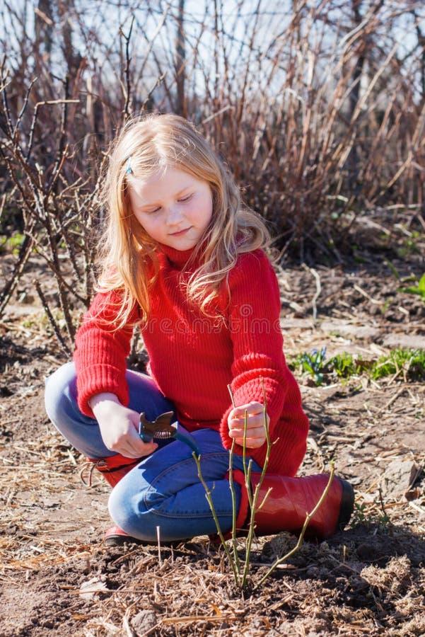 Dziewczyna pracuje w ogródzie obraz stock