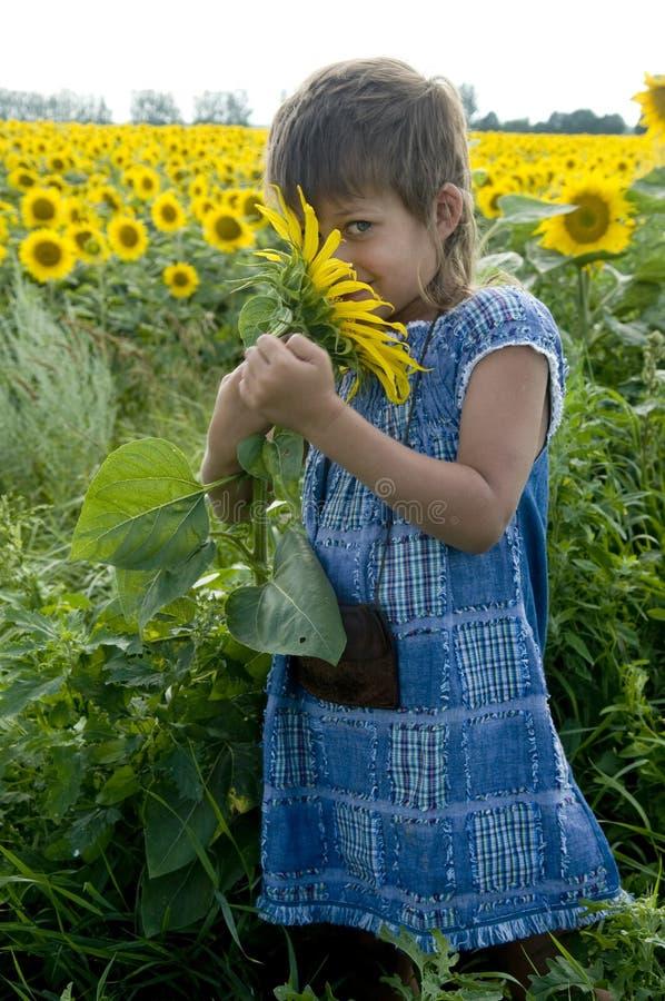 dziewczyna słonecznik zdjęcie stock