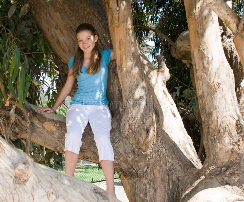 dziewczyna siedzi nastoletniego drzewa fotografia royalty free