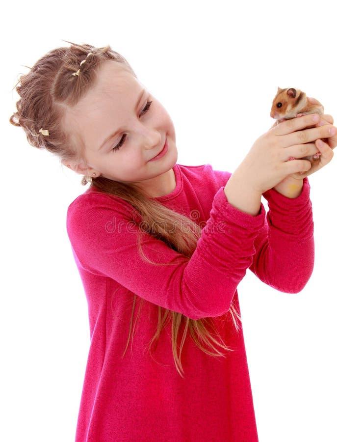 Download Dziewczyna trzyma chomika zdjęcie stock. Obraz złożonej z miłość - 57669460