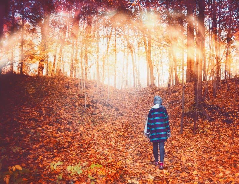 Dziewczyna w błękitnym żakiecie z białym szalikiem i szary kapelusz na wieczór, jesień las promienie położenia słońce, piękny ye obrazy stock