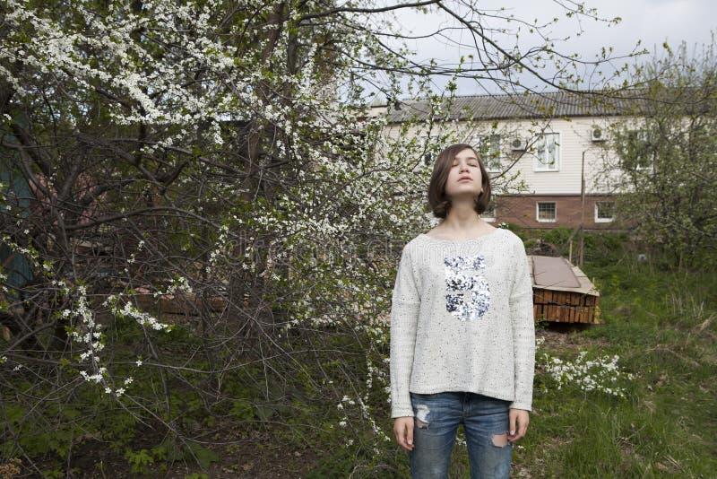 Dziewczyna w białym pulowerze dreamily zamyka ona blisko kwitnącej wiśni oczy od jaskrawego słońca w ogródzie obraz stock