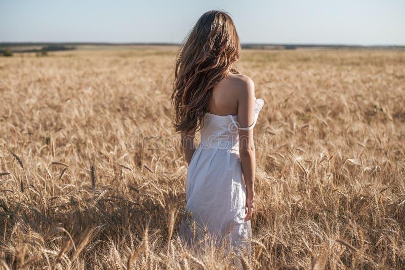 Dziewczyna w białym sukni polu, pszeniczny plenerowy odtwarzanie, piękna suknia Kobieta chodzi outdoors fotografia stock