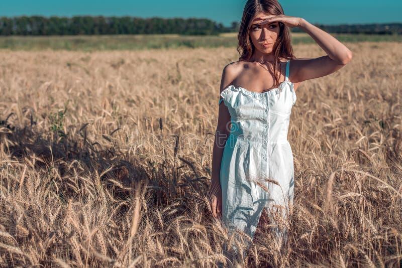 Dziewczyna w białym sukni polu, pszeniczny plenerowy odtwarzanie, piękna suknia Patrzeje out w odległość, jego ręka jest obrazy royalty free