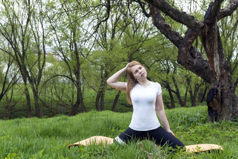 Dziewczyna w bielu wierzcho?ka obsiadaniu na trawie i robi? joga w parku w?r?d greenery zdjęcia royalty free