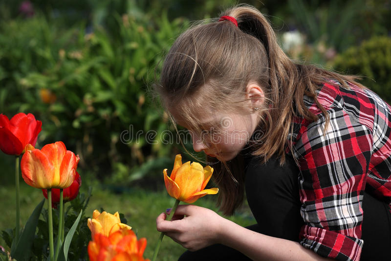 Download Dziewczyna Wącha Kwiaty W Ogródzie Obraz Stock - Obraz złożonej z przyrost, kwiecisty: 53783975