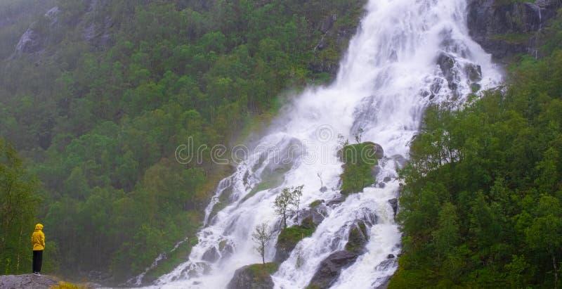 Dziewczyna w deszczu podziwiająca wodospad Flesefossen, Brattlandsdalen obraz royalty free