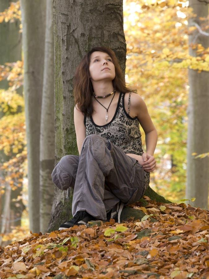 Dziewczyna w drewnie zdjęcia royalty free