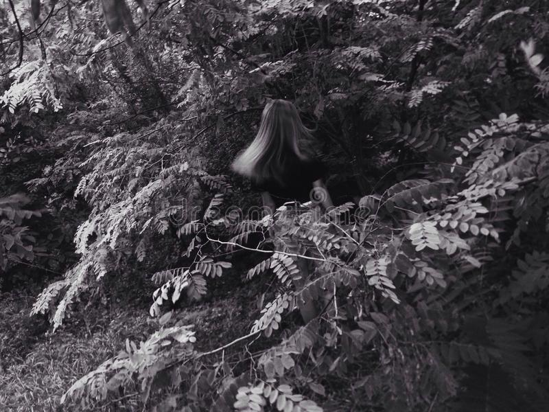Dziewczyna w dzikim fotografia stock