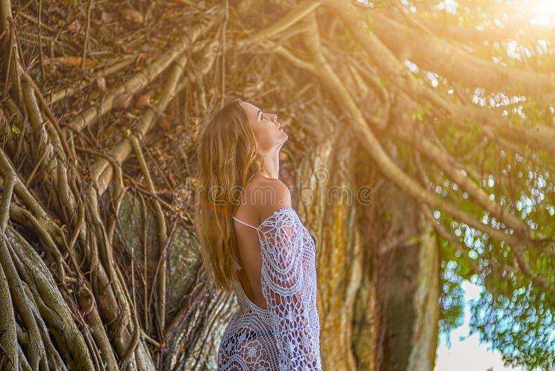 Dziewczyna w profilu patrzeje w górę drzewnych korzeni blisko zdjęcia royalty free