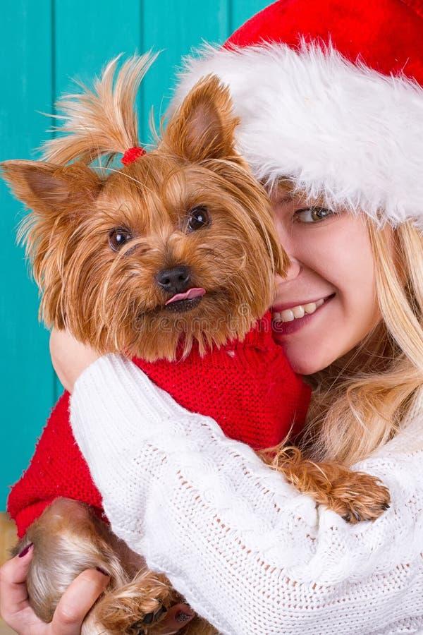 Dziewczyna w Santa nakrętce z yorkie psem w czerwonym pulowerze obraz royalty free