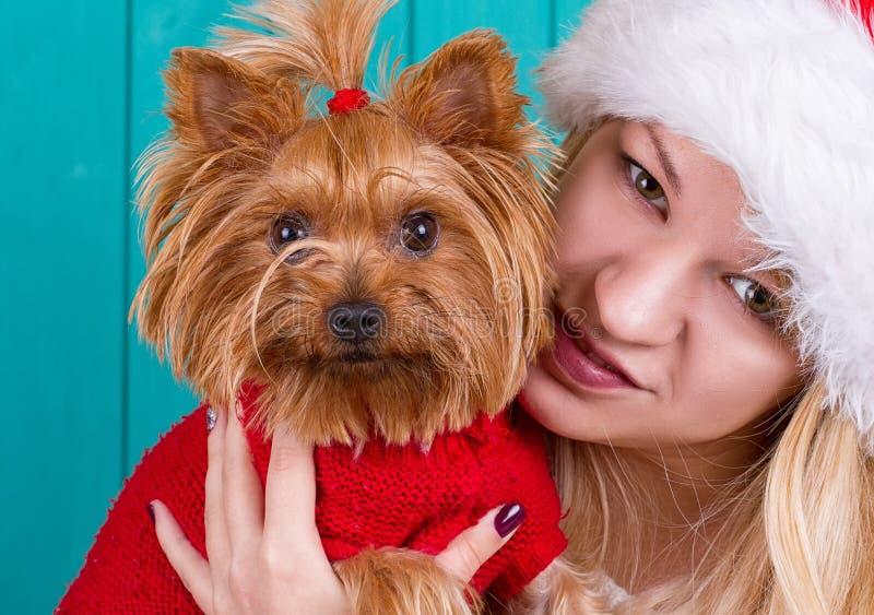Dziewczyna w Santa nakrętce z yorkie psem w czerwonym pulowerze obraz stock