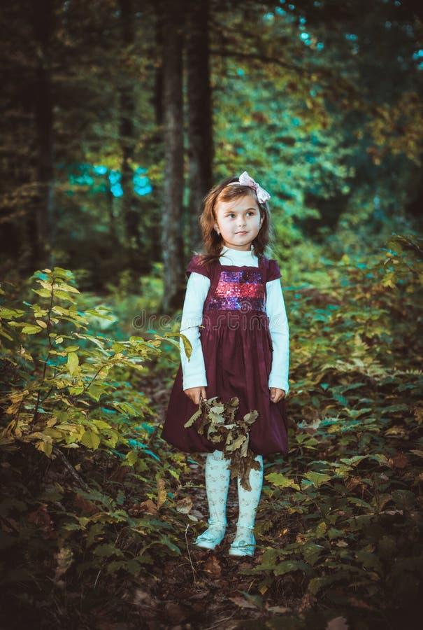 Dziewczyna w sukni przy jesienią obrazy stock